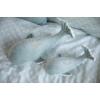 Kép 4/4 - Little Dutch plüss játék  bálna - menta 35 cm